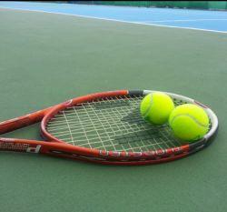 Tenis: De Bakker – Miedler